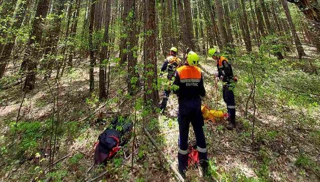 Спасатели снимали парапланериста с сосны на склоне Ай-Петри